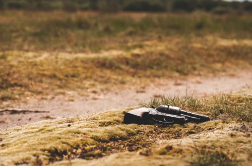Citadela (Kate Mossová)