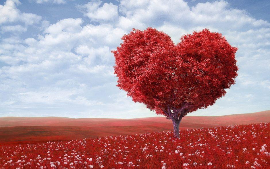 5 najlepších historicko-romantických sérií